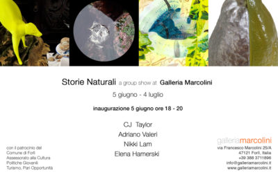 Storie Naturali at Galleria Marcolini, Italy