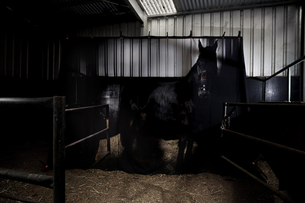 CJ Taylor photographic artwork The Colonel's Stable