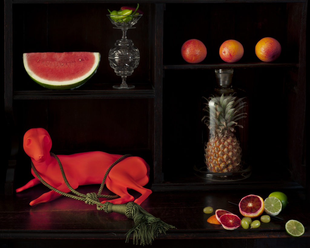 Still life with watermelon, blood oranges and Thylacine Pup